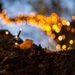 El regreso de la luz – solsticio de invierno